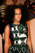 th_27616_Tikipeter_Solange_Knowles_Savage_Beauty_Gala_002_123_57lo.jpg